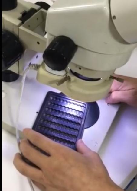 静电除尘设备显微镜下的效果