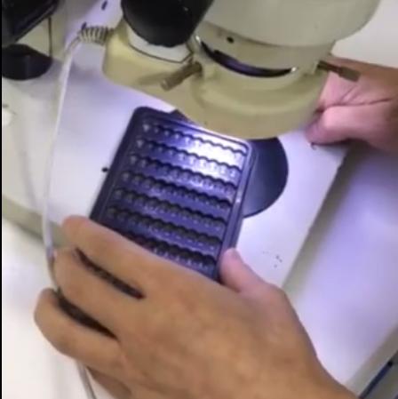 显微镜下的塑胶产品托盘除尘效果